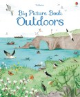 9781409598732-big-picture-book-outdoors
