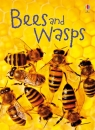 bees-and-wasps