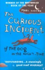 curious-incident-cover